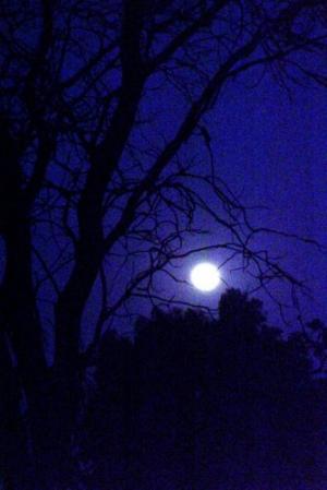 /Lua suspensa...
