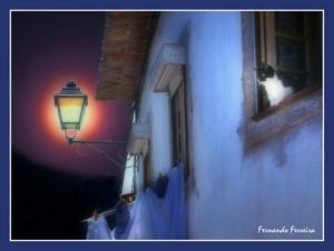 /noite na aldeia