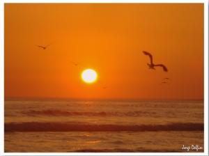 Outros/Praia da Mata - Por do Sol