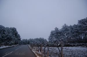 Paisagem Natural/Neve em Dornelas