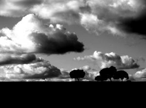 Paisagem Natural/És do tamanho das nuvens...