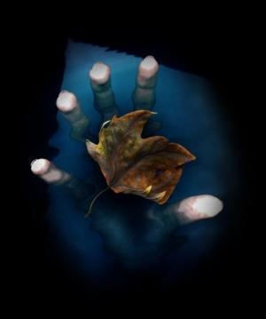 Arte Digital/folha de outono