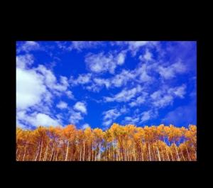 Paisagem Natural/Paisagem azul e amarela