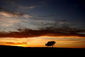 Paisagem Natural/Céus do Alentejo...