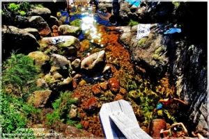 Outros/Pequeno rio do geres