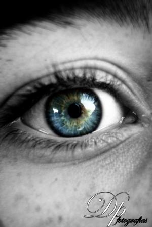 Retratos/Um olhar ,