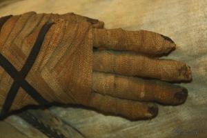 História/Múmia II