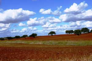 Paisagem Natural/... Céus do Alentejo...