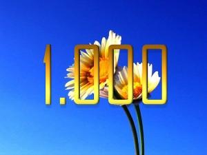 Outros/1.000 fotos