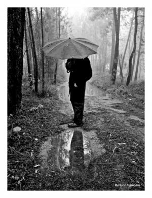 Outros/-dias de chuva...-