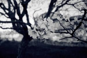 Outros/Wintertime