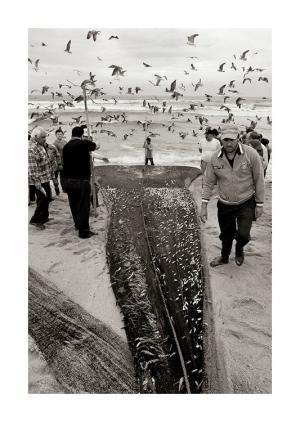 Gentes e Locais/Pesca em Espinho