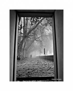 /-uma janela para o tempo...-