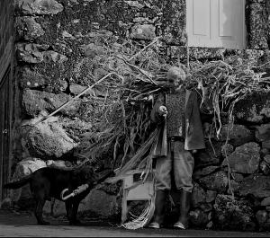 Gentes e Locais/RURALIDADES - AMIGO E COMPANHEIRO