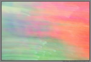 Abstrato/Quase fotografia quase pintura no jardim IV