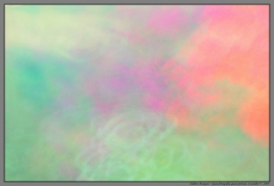 Abstrato/Quase fotografia quase pintura no jardim V