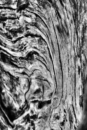 Abstrato/dos rios que choram