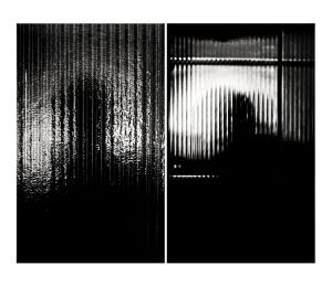 Abstrato/a face siamesa das sombras