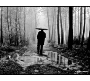 /Dias de Chuva-Encontro com a natureza.