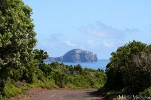 Paisagem Natural/A caminho do Morro