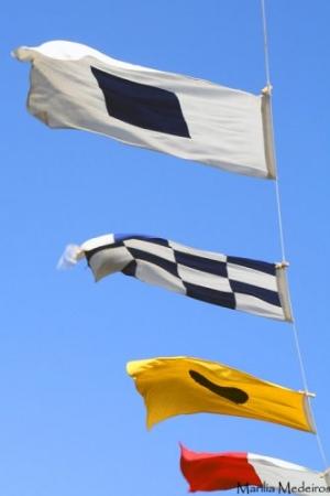 Macro/Bandeiras