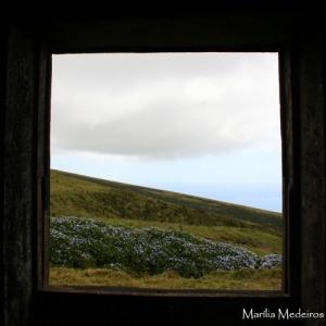Paisagem Natural/De uma janela...