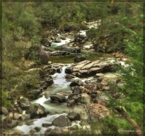 Paisagem Natural/Gerês - O Paraíso na terra