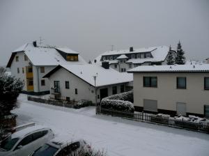 Outros/Inverno em minha rua... (31.01.2010)