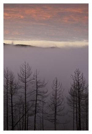 Paisagem Natural/à chegada da névoa