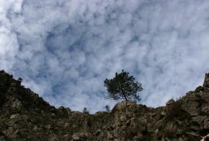 Paisagem Natural/O Céu
