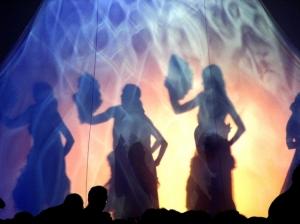 Espetáculos/sombra flamenca