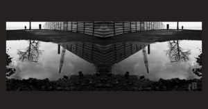 Abstrato/Photo Rorschach