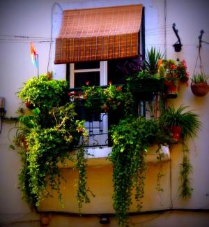 Paisagem Urbana/à janela...