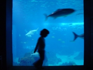 /Movimento Subaquático...