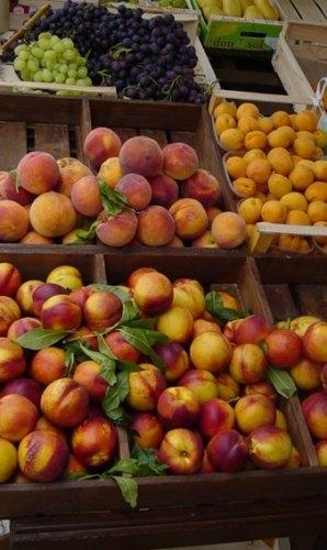 /Frutos de Verão