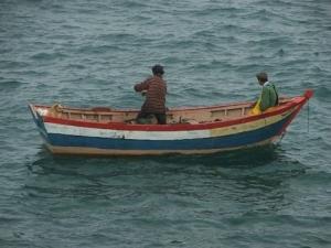 /A vida no mar