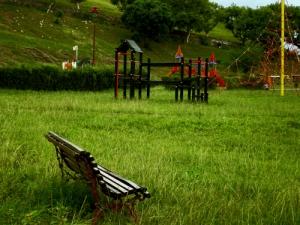 /Um Parque Sob o Olhar De Um Certo Domingo ...