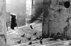 Paisagem Urbana/os pombos