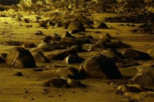 /Praia dourada