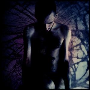 Arte Digital/Aux bords déchiquetés de la brisure