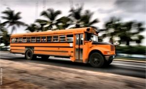 """/"""" Bus """""""