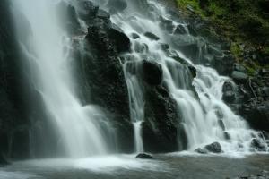 Paisagem Natural/Nos Açores