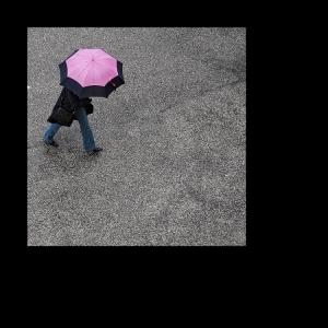 /A cor que a chuva me traz (5)