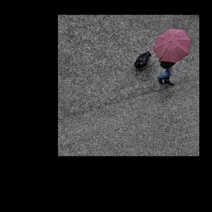 /A cor que a chuva me traz (7)