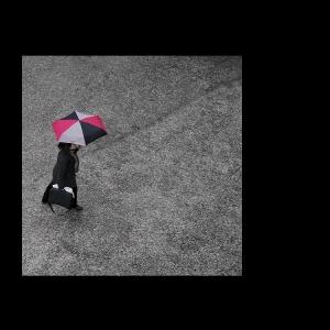 /A cor que a chuva me traz (11)