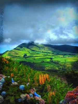 Paisagem Natural/Painting Our Beautiful Land