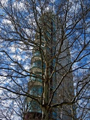 """Paisagem Urbana/Desafio - """"O poder da Natureza é infinito"""""""