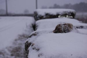 Outros/Manhã de Neve