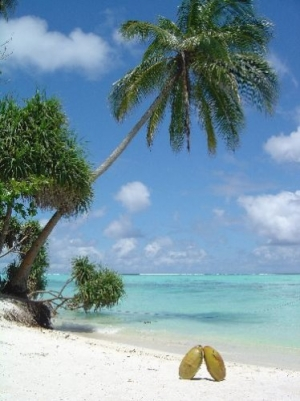 Paisagem Natural/praia privada