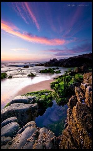 Paisagem Natural/Diálogos entre a Luz e Serenidade...